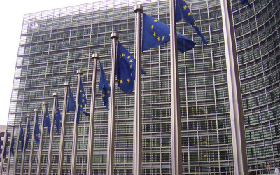 Statement of the EU Delegation in Haiti in view of the current challenges