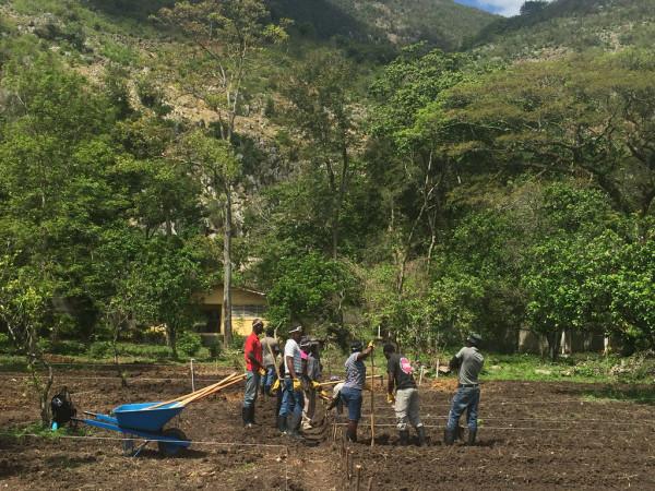 [:en]Is the agrarian sector on the right path?Les filières filent-elles un bon coton?